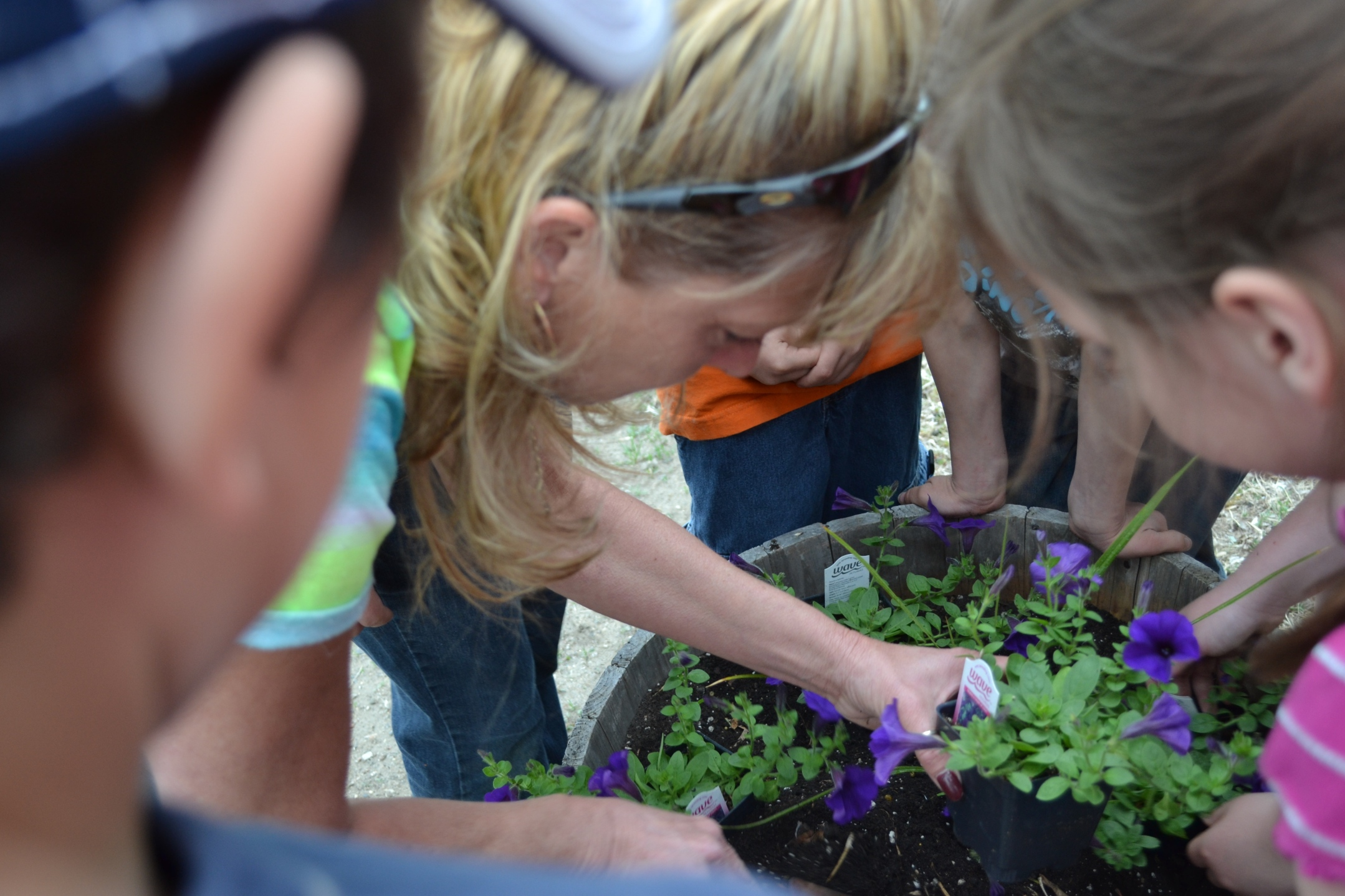 Growing Farm to School in Gackle